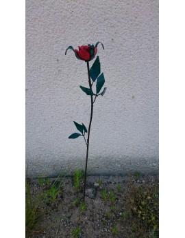 Tuteur rose rouge