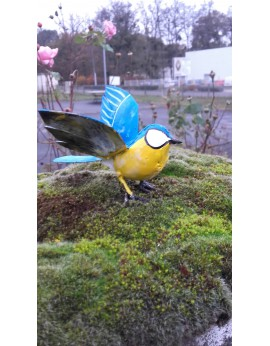 Mésange peinte ailes ouvertes