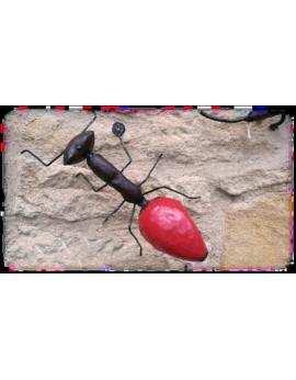 Grande fourmi  rouge 50 cm