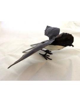 Hirondelle blanche ailes ouvertes